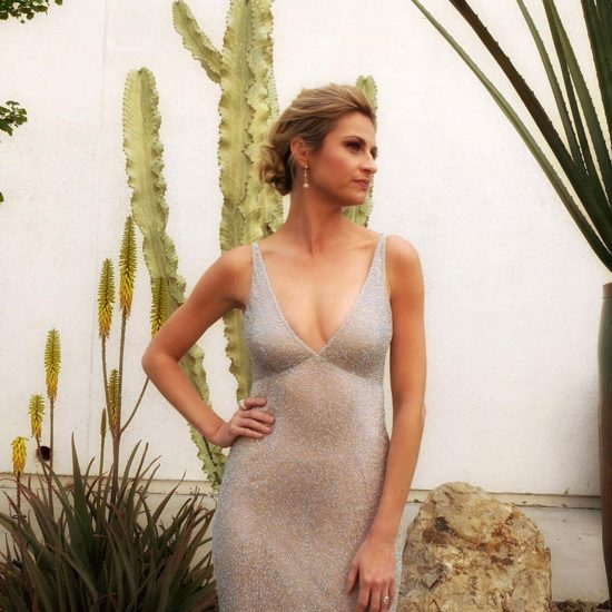 Erin Andrews hot in silver dress