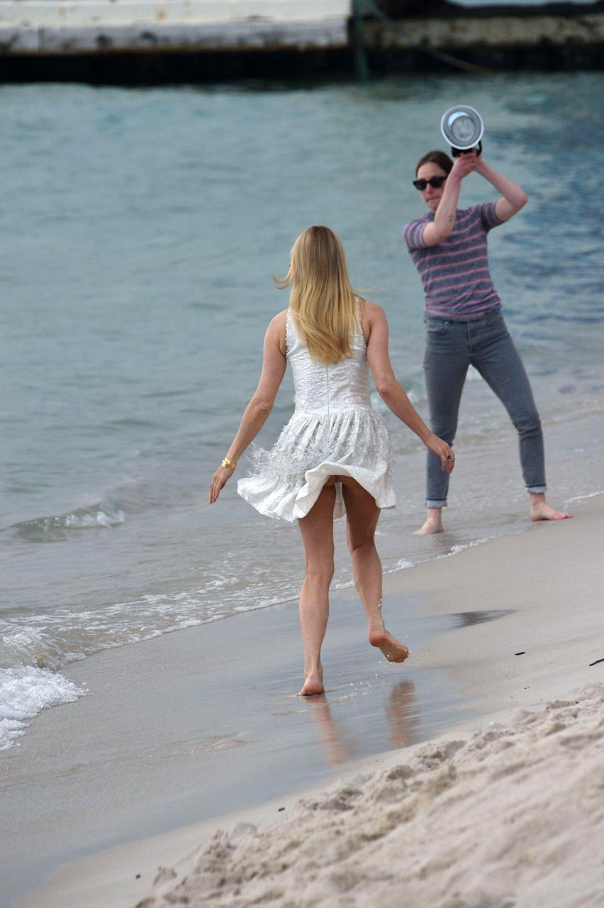 Actress Chloe Sevigny Flashes Her Ass in Cannes - Scandal
