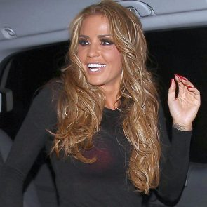 Katie Price Nude in Leaked Sex Tape and Photos 27