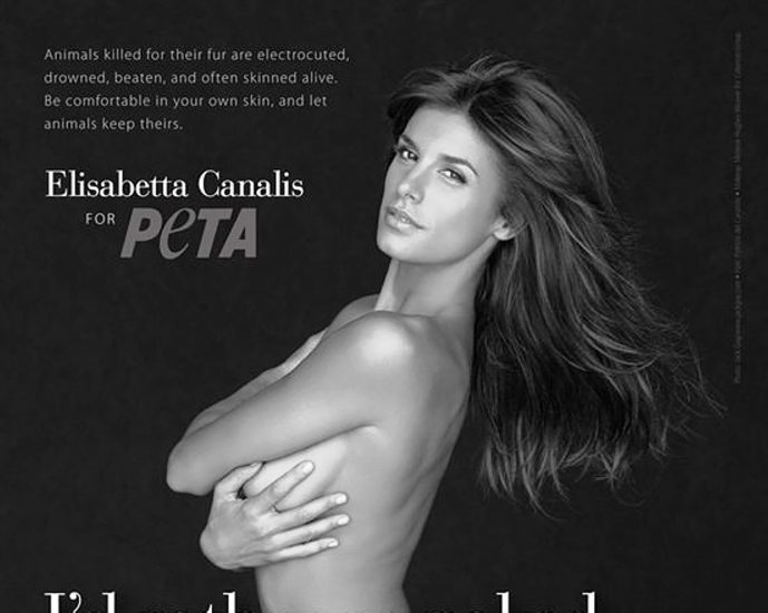 Elisabetta Canalis Nude & Topless ULTIMATE Collection 89