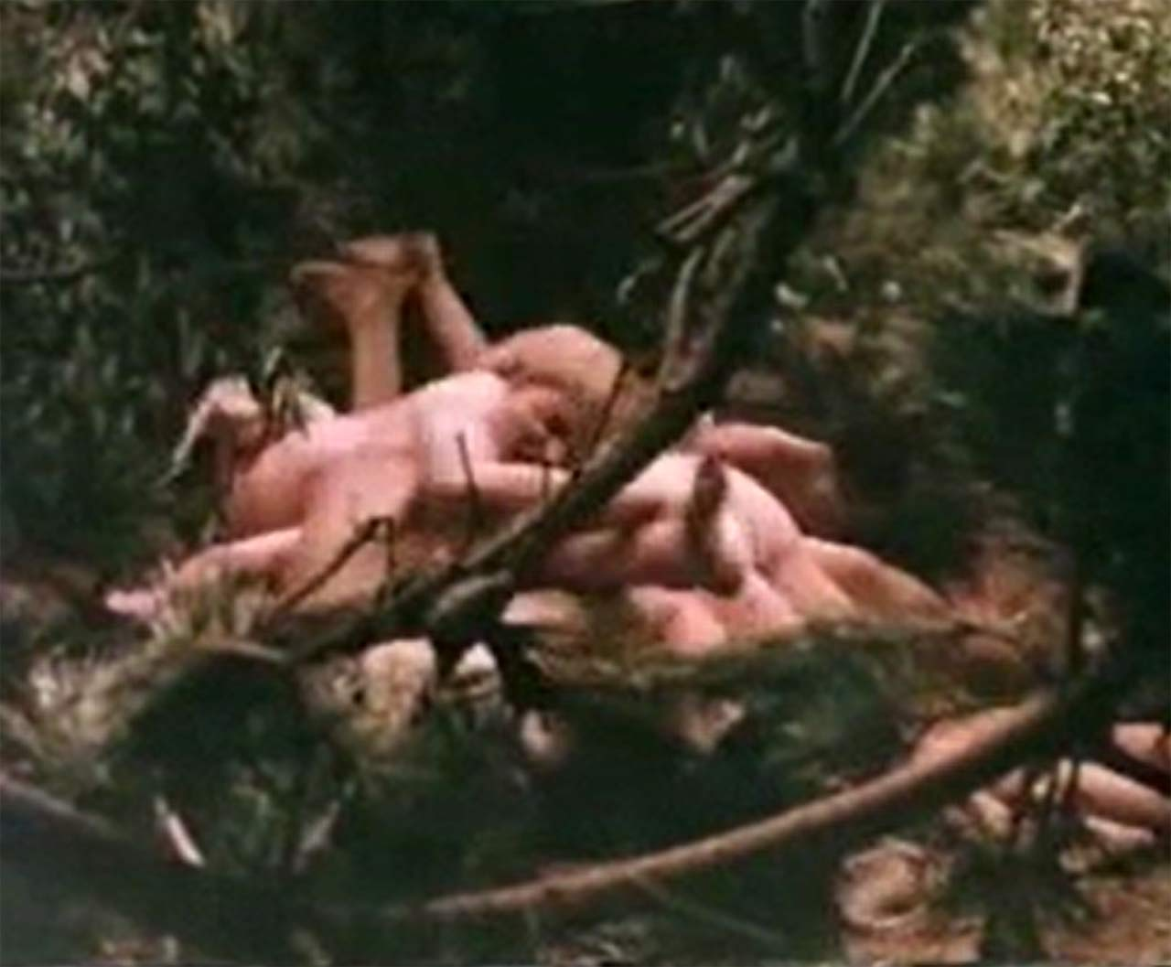 photo Catherine burns barbara hershey nude forced sex scene in last summer