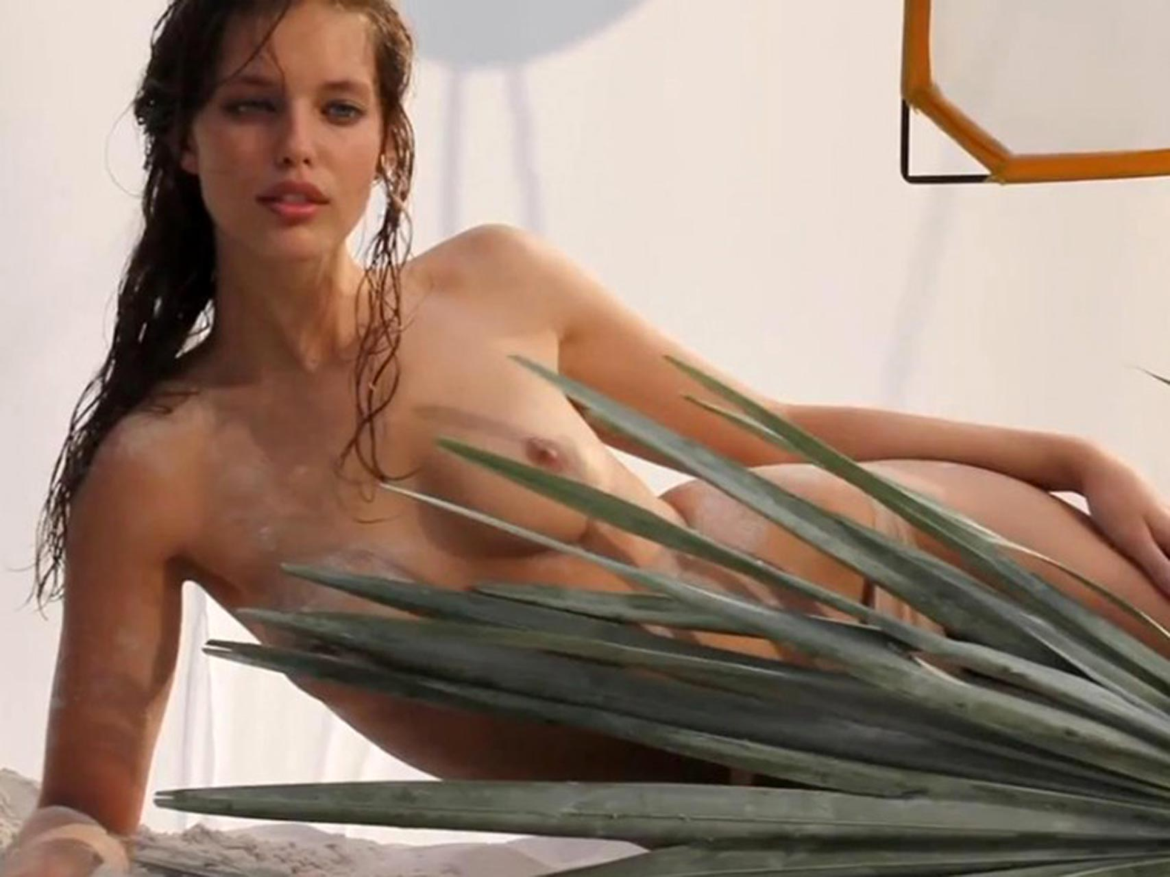 Topless Emily Didonato nude (27 foto and video), Ass, Paparazzi, Twitter, braless 2018