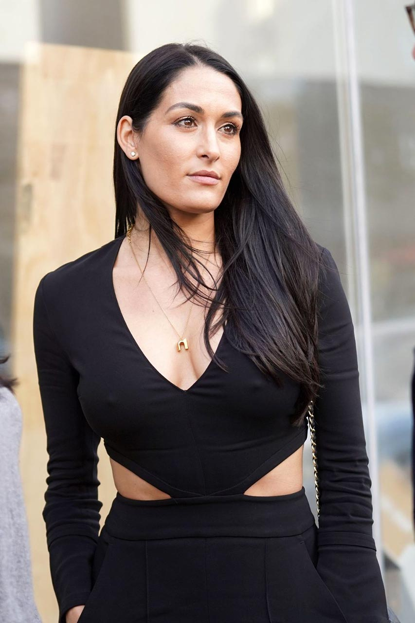 Nikki Bella Cleavage Was Seen Too Many Times - Scandal Planet