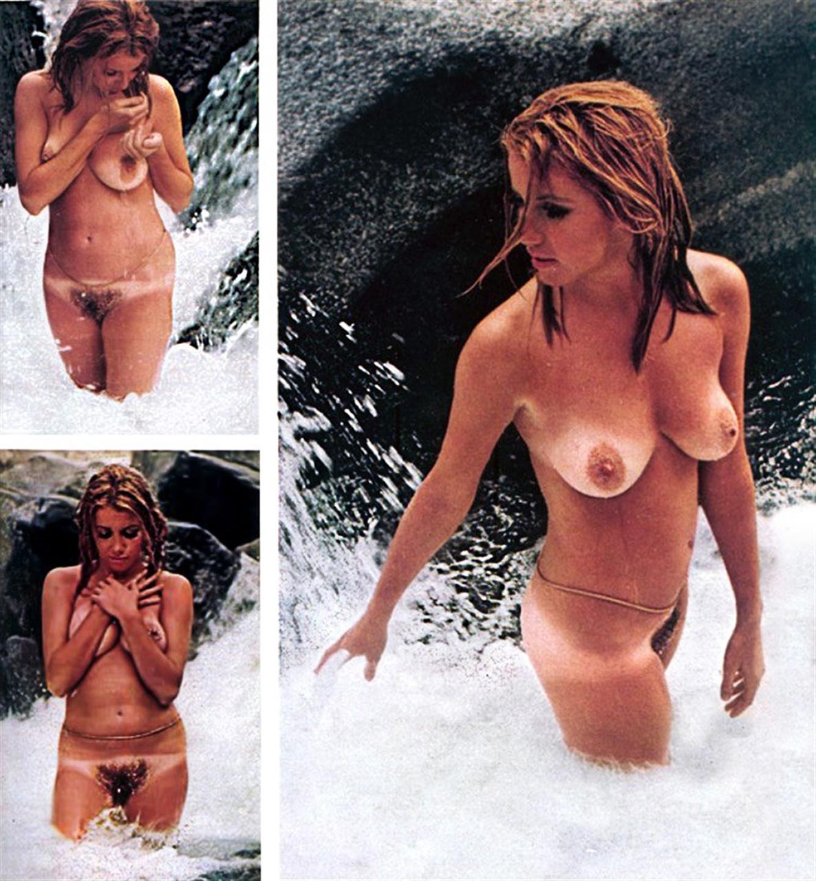 Suzanne summers nude