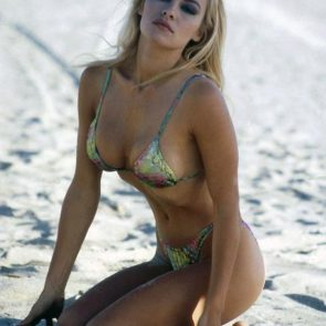 Pamela Anderson Nude Pics and Leaked Sex Tape 132