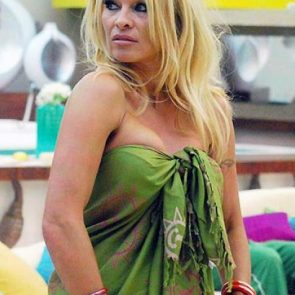 Pamela Anderson Nude Pics and Leaked Sex Tape 111