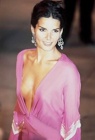 Angie Harmon Nude & Sexy Photos And Topless Sex Scenes 28