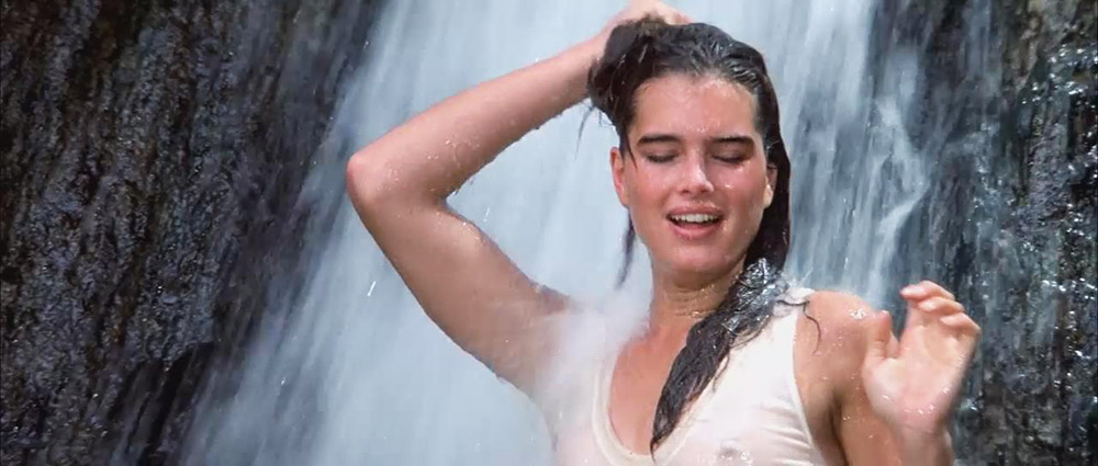Brooke Shields Nude & Topless Pics And Sex Scenes Compilation 5