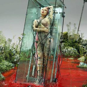 Lady Gaga Nude Pics, Porn & Sex Scenes [2021 Update] 33
