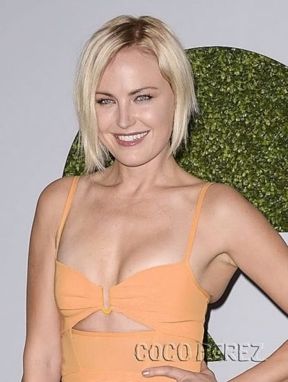 Malin Akerman Nude in Sex Scenes & Topless Pics Collection 78